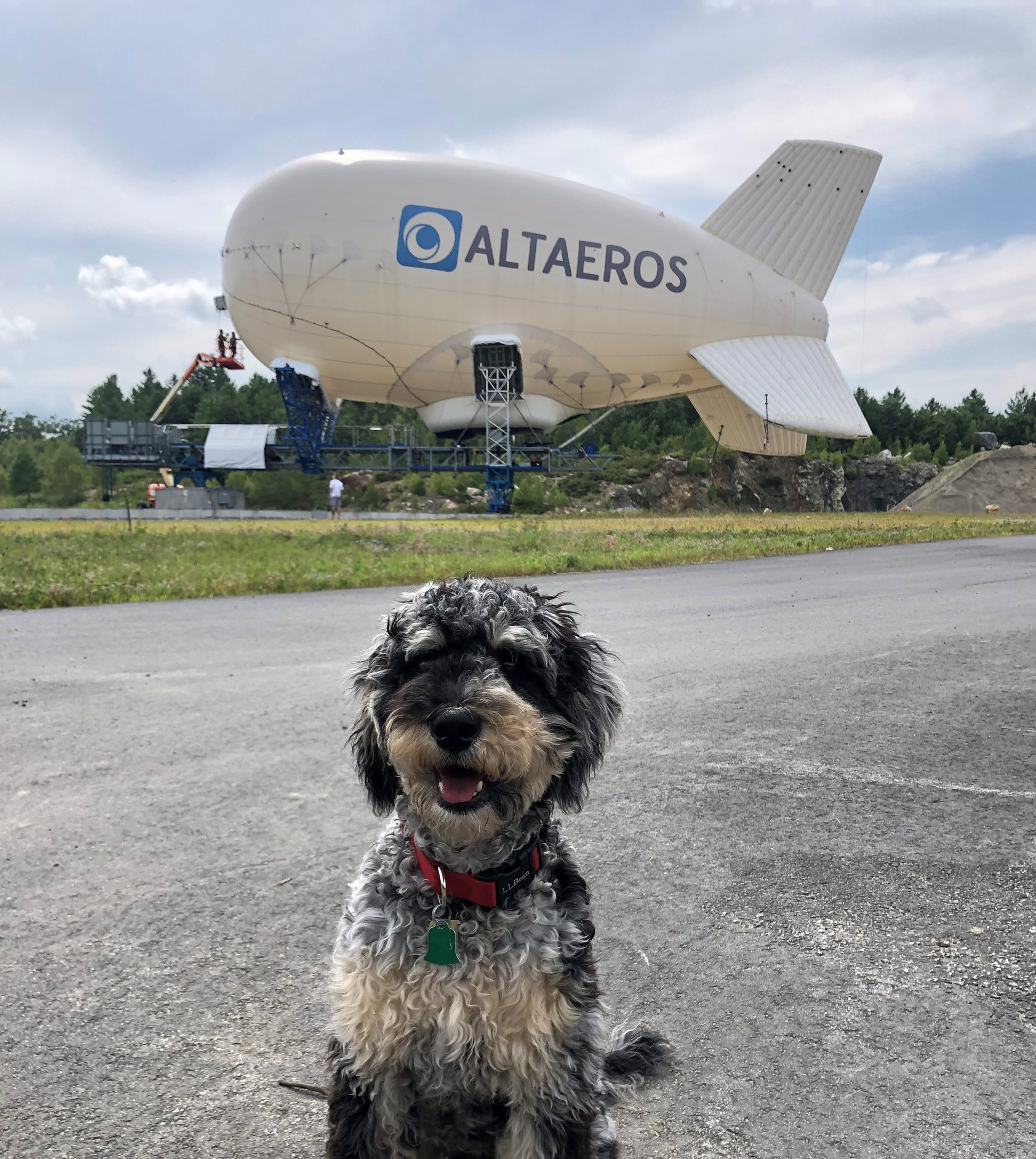 A dog sitting in front of the SuperTower at Altaeros' R&D Center